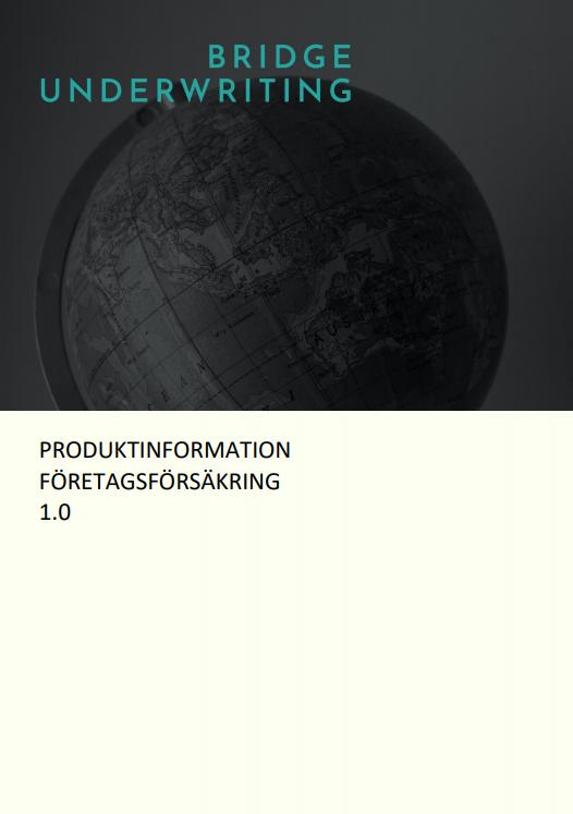 Produktinformation Bridge Underwriting Cover Image