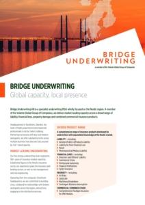 Bridge Underwriting Factsheet Cover Image